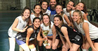Asociación de Voleibol del Sudeste